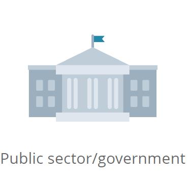 Government icon